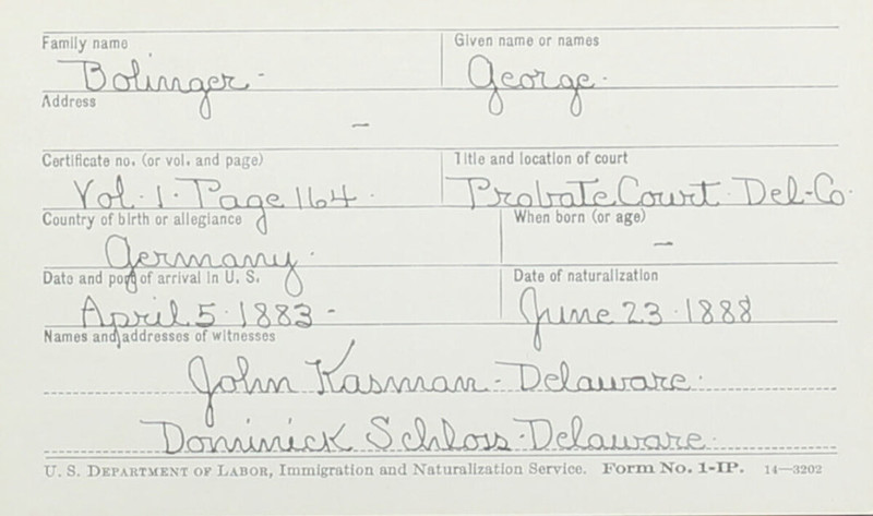 Naturalization Records Delaware County OH (p. 210)
