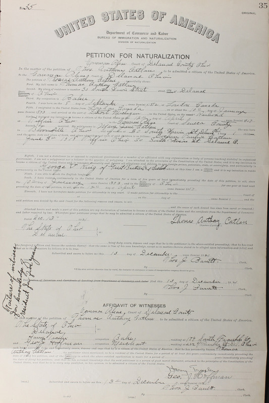 Naturalization Records Delaware County OH (p. 336)