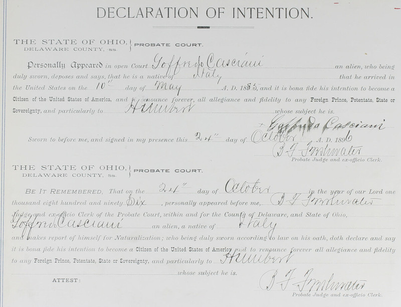 Naturalization Records Delaware County OH (p. 329)