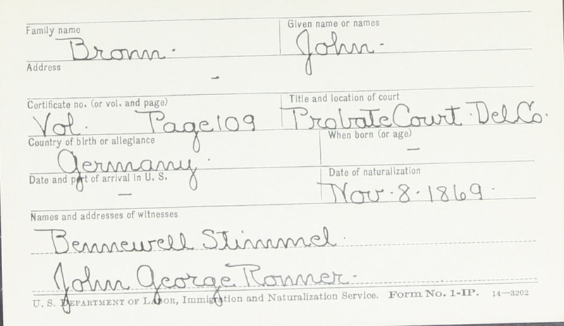 Naturalization Records Delaware County OH (p. 263)