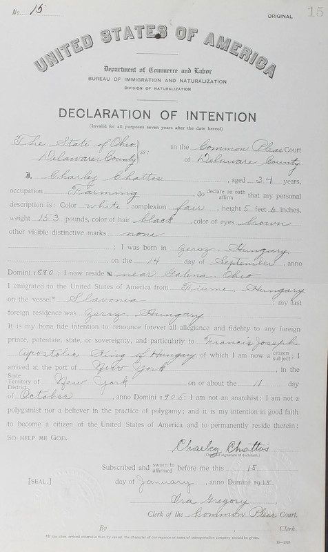 Naturalization Records Delaware County OH (p. 361)