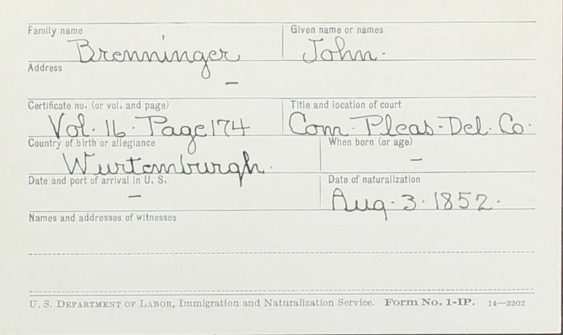 Naturalization Records Delaware County OH (p. 245)