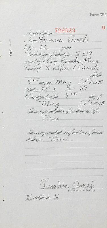 Naturalization Records Delaware County OH (p. 25)