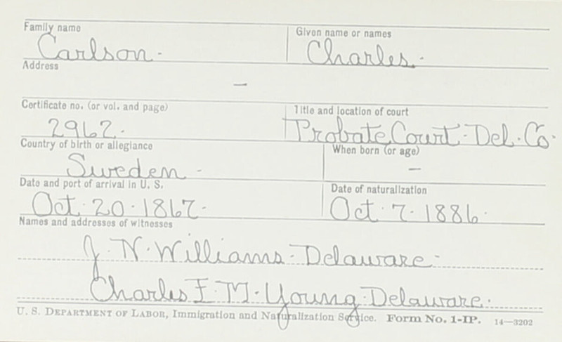 Naturalization Records Delaware County OH (p. 324)