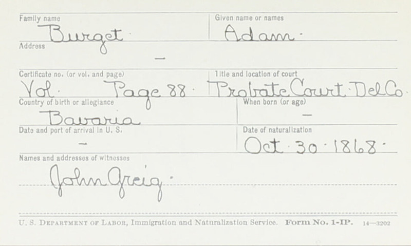 Naturalization Records Delaware County OH (p. 278)