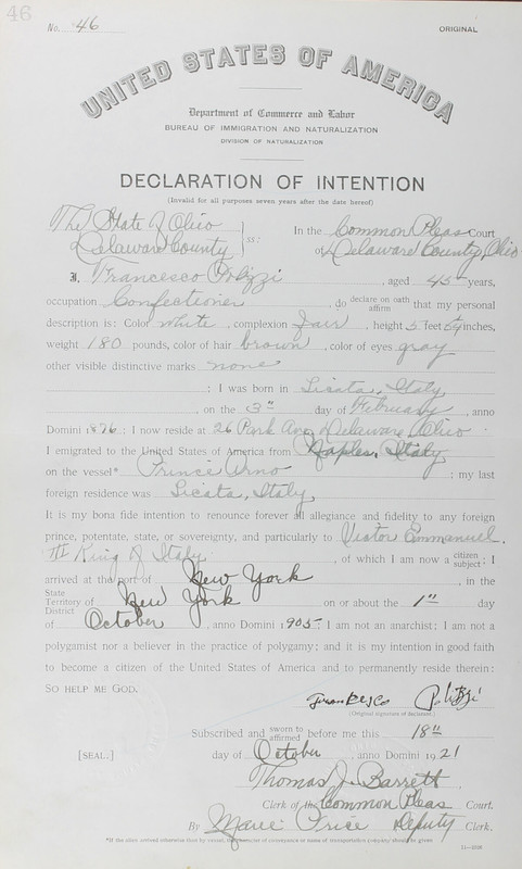 Naturalization Records Delaware County OH (p. 302)