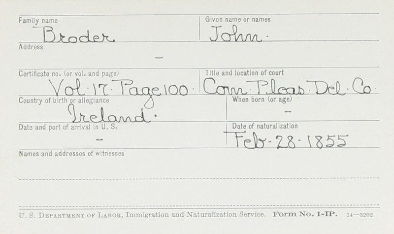 Naturalization Records Delaware County OH (p. 262)
