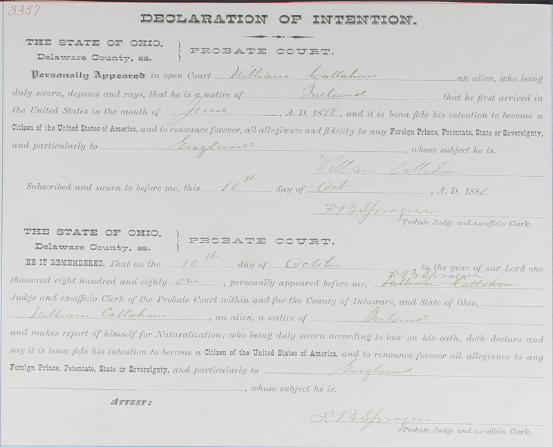 Naturalization Records Delaware County OH (p. 296)