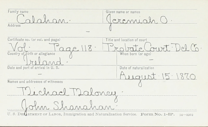 Naturalization Records Delaware County OH (p. 291)