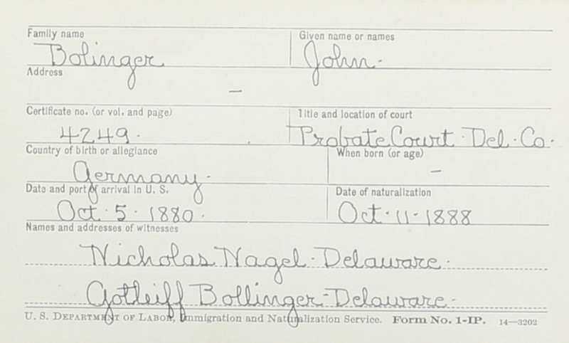 Naturalization Records Delaware County OH (p. 215)