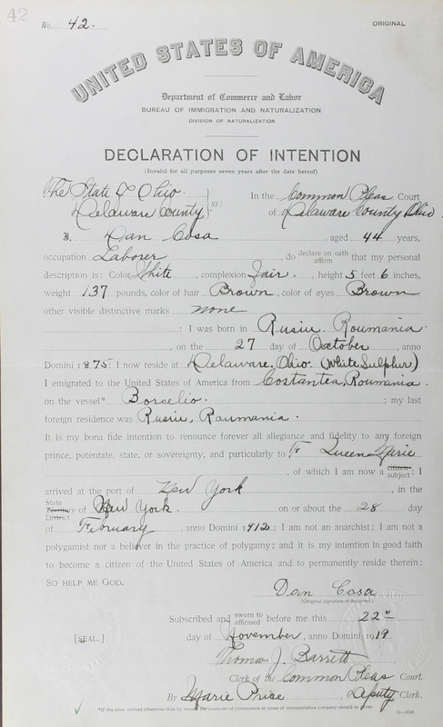 Naturalization Records Delaware County OH (p. 229)